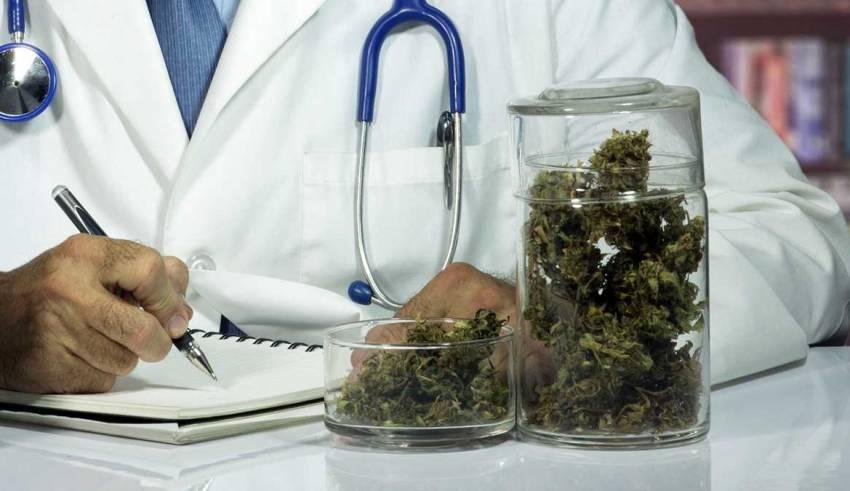 Marihuana działanie i właściwości